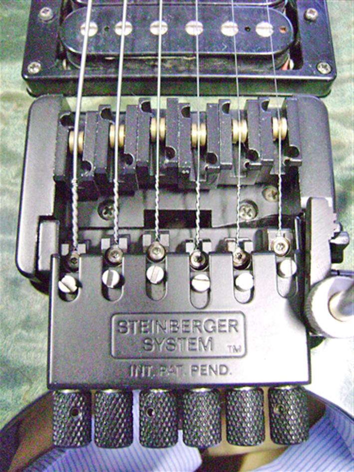 Steinberger-Trem-web.jpg